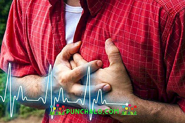5 leggyakoribb érrendszeri panasz kezelése gyógynövényekkel - EgészségKalauz