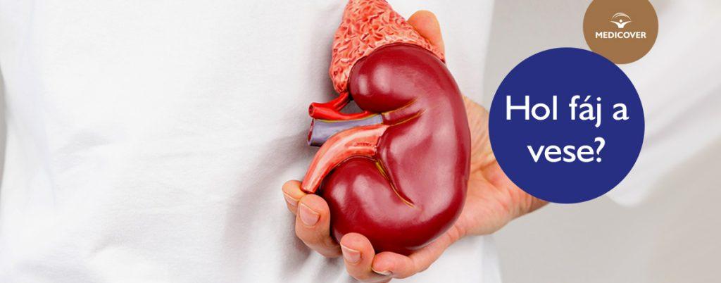 vizelethajtó hatású magas vérnyomás elleni gyógyszer hogyan lehet ellenőrizni hogy van e magas vérnyomás