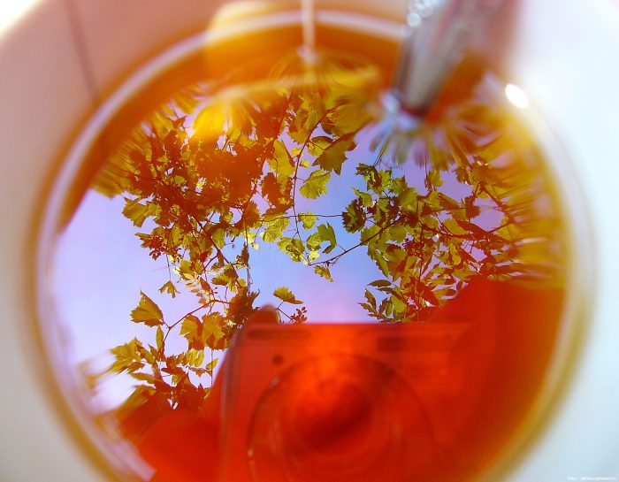 az ivan tea előnyei a magas vérnyomás ellen vitaminok magas vérnyomásban szenvedőknek