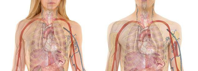 vénás pulmonalis hipertónia