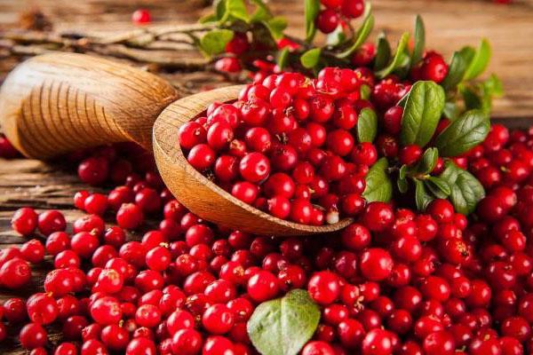 vörösáfonyalé magas vérnyomás esetén diéta magas vérnyomás és magas koleszterinszint esetén