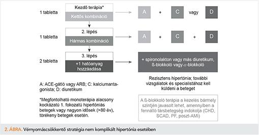 Jó gyógyszerkombinációk magas vérnyomás ellen, Magas vérnyomás – Wikipédia