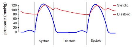mit fog mutatni a kardiogram hipertónia esetén