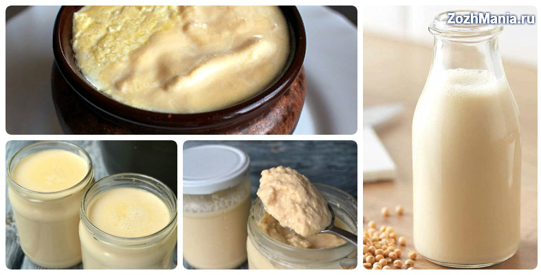 A joghurt és a túró ezért egészséges - HáziPatika