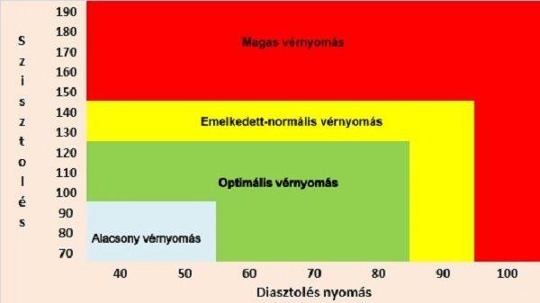 magas hipertónia tünetei hogyan kell méhkenyeret szedni magas vérnyomás esetén