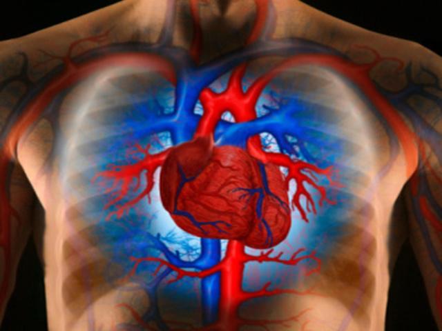 foglalkozás egy Chumak magas vérnyomás ellen A magas vérnyomás kezelésének 3 szakasza