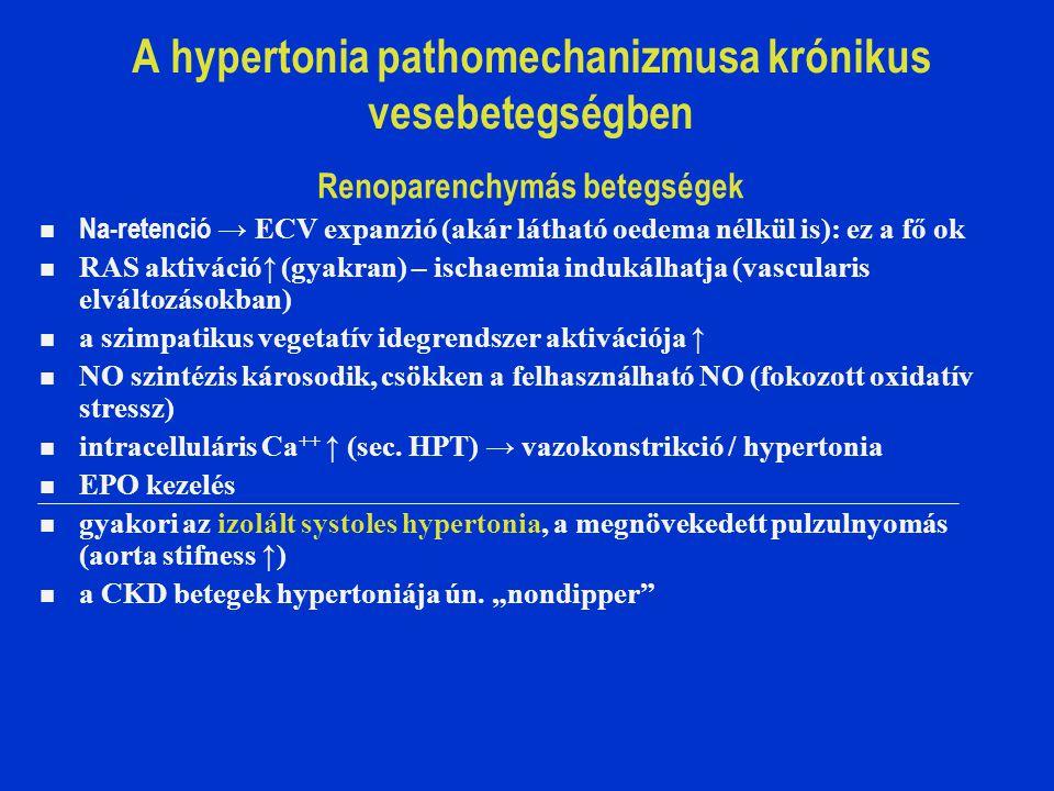 Vascularis encephalopathia