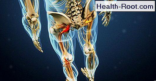 pregabalin és magas vérnyomás lehetséges-e fogyatékosságot kapni 3 fokos magas vérnyomás esetén