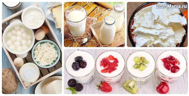 Erjesztett tejtermékek - Tudástár