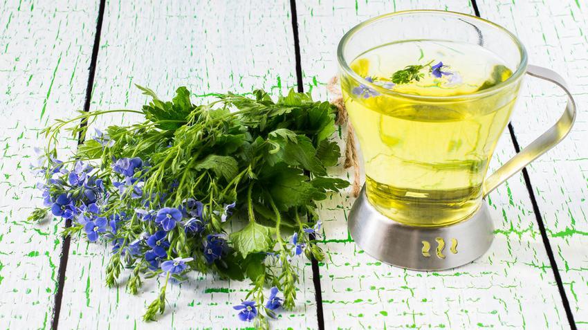 magas vérnyomás esetén alkalmazott növények