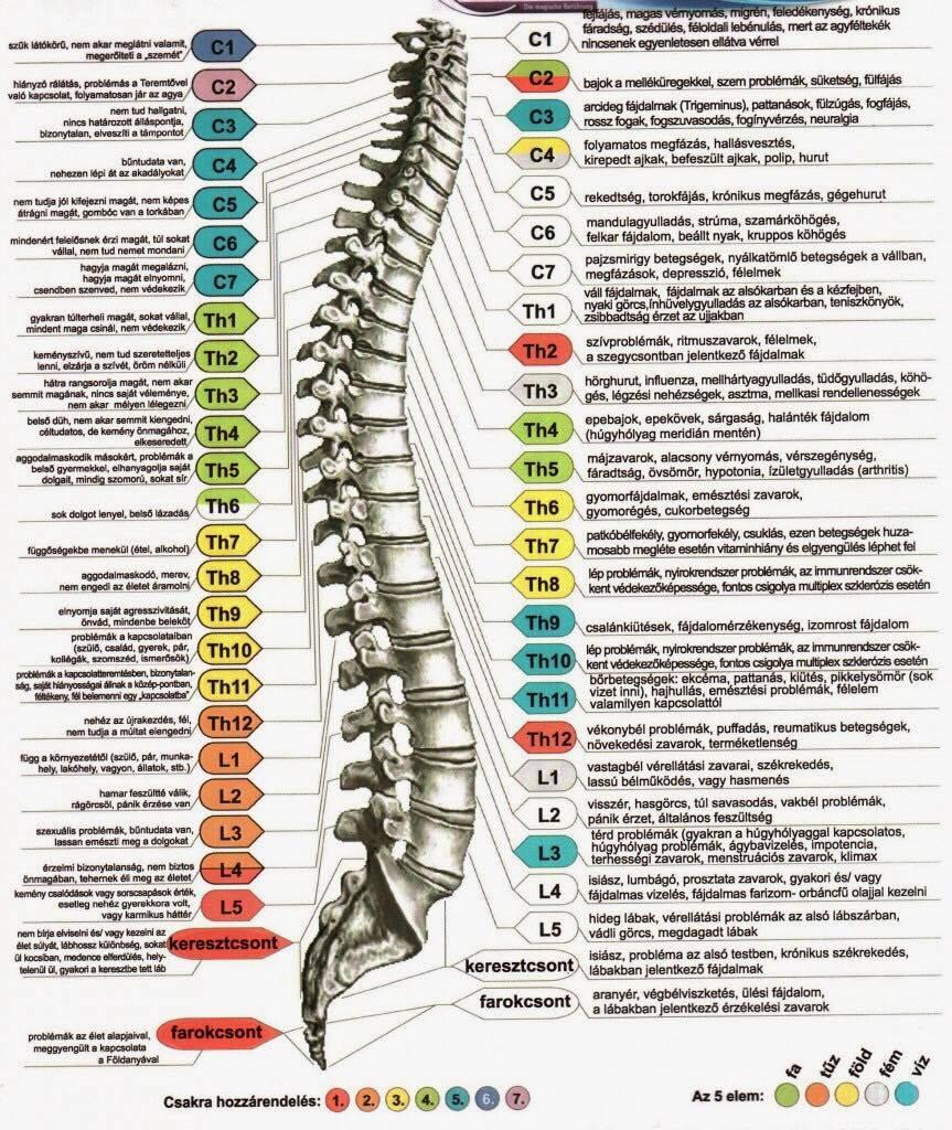 csigolya artériák hipertónia
