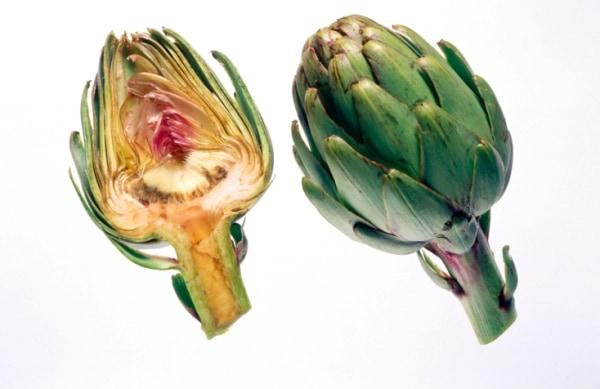 Articsóka: gyógyít és fogyaszt