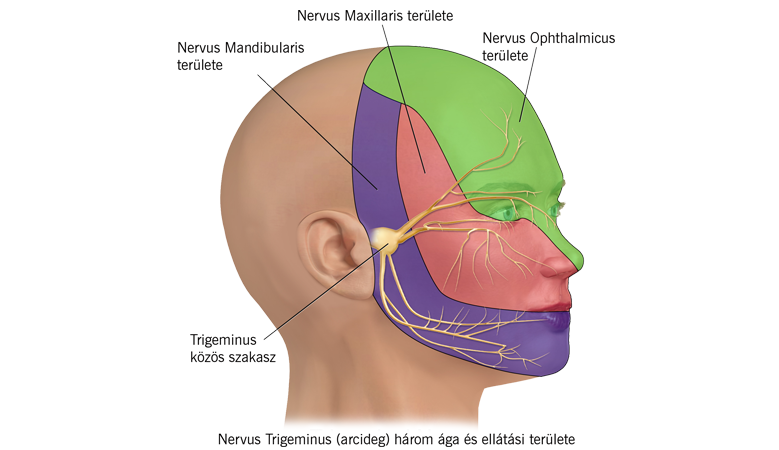 Neuropátiás fájdalom