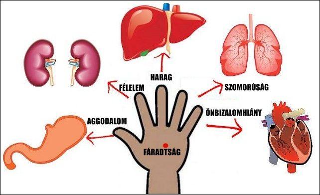 magas vérnyomás és reuma