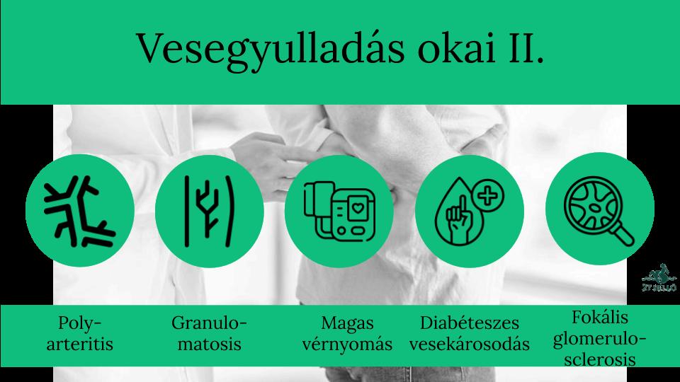 vesekárosodással járó magas vérnyomás a magas vérnyomás reflexológiai kezelése
